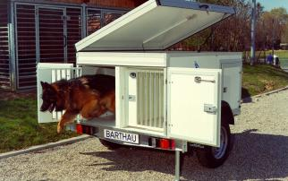 Hundetransporter